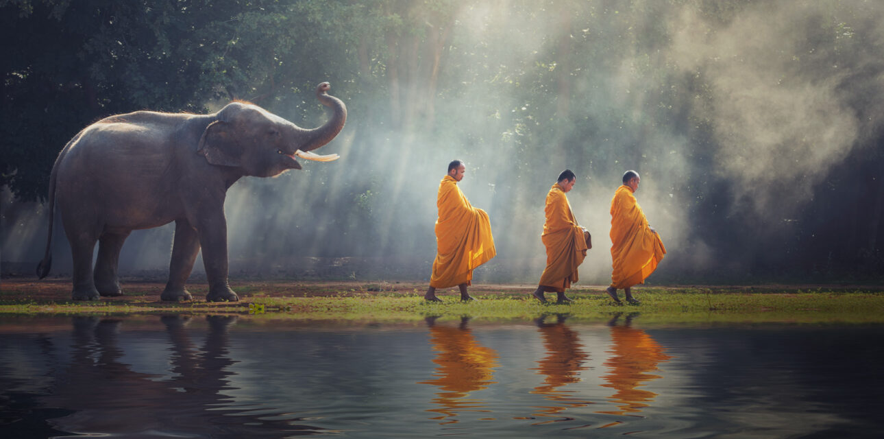 An elephant and monks in Asia.