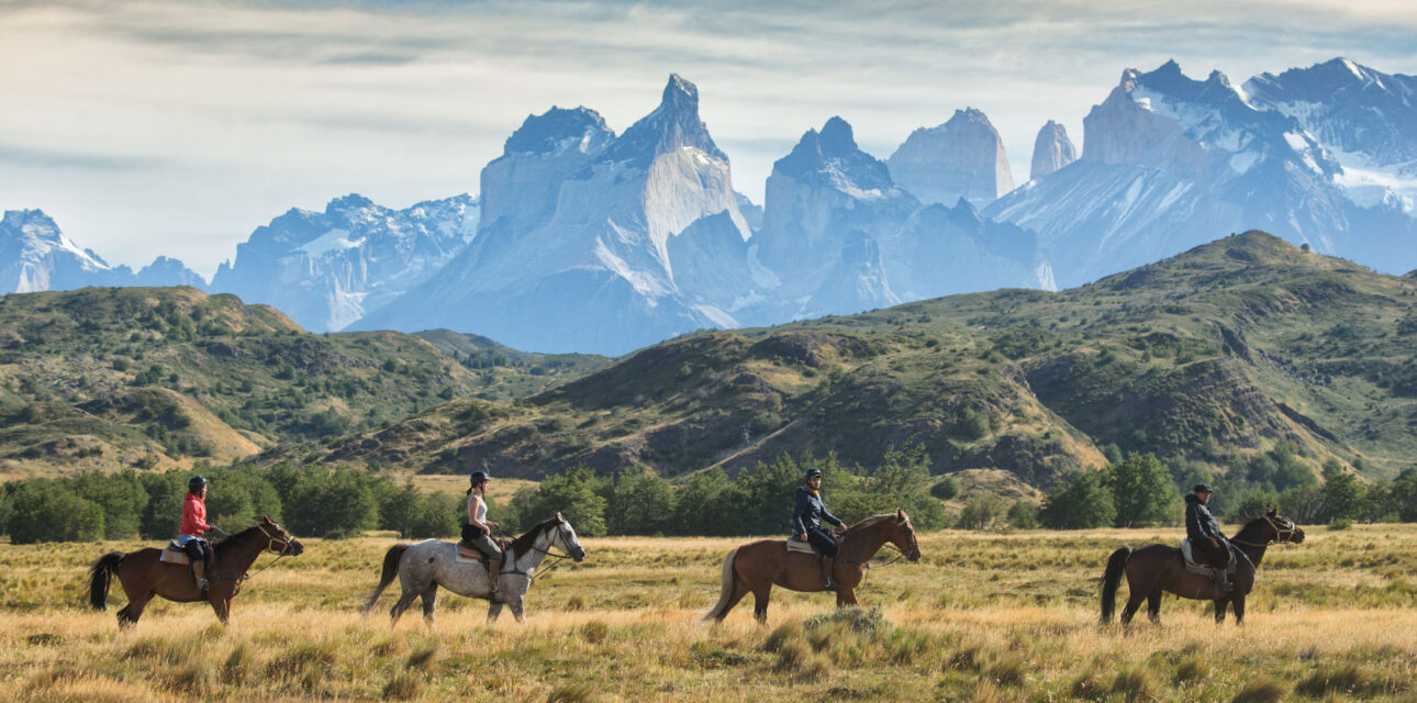 Horses walking by a mountain in Chile.