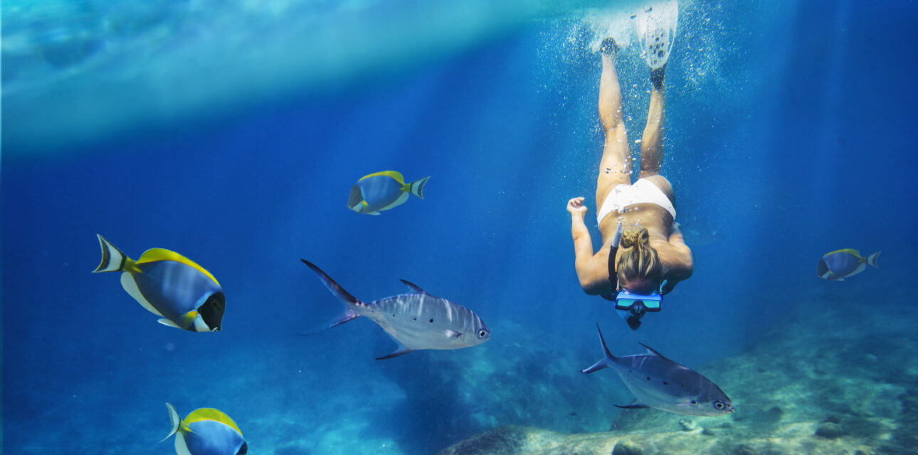 A young girl snorkeling.