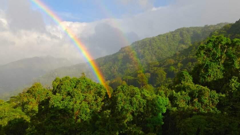 A rainbow over the forests in Panama.