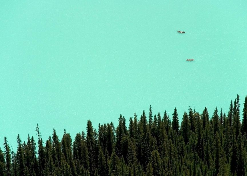 North America Canada Alberta Lake Louise Overhead Aerial Drone Water Forest and Canoes
